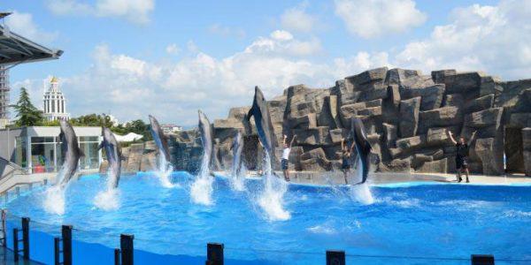 Batumi-dolphinarium